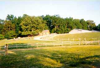 Peavine Creek Saddlebred Farm Grounds(10,696 bytes)