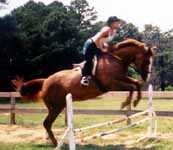 Jumping at Peavine Creek's Riding Camp Program (8058 bytes)