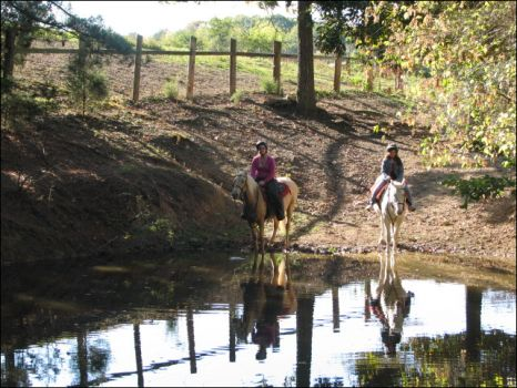 Trail Riders at Peavine Creek